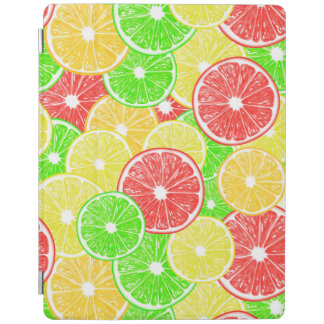 Zitrone, Orange, Pampelmuse und Limones iPad Hülle