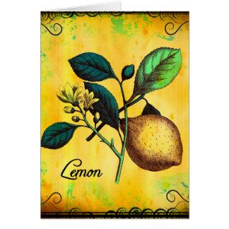 Zitronen-Frucht-Blumen-Blätter-Vintages Karte