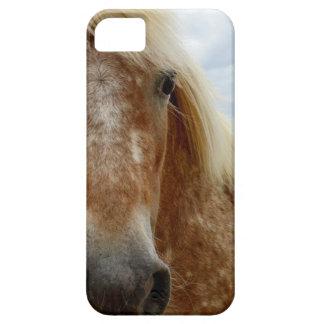 Zuckern Sie das Appaloosa-Pferd, _ Hülle Fürs iPhone 5