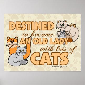 Zukünftige verrückte Katzen-Dame Funny Saying Poster