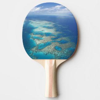 Zunge-Riff, Great Barrier Reef Marinepark, Tischtennis Schläger