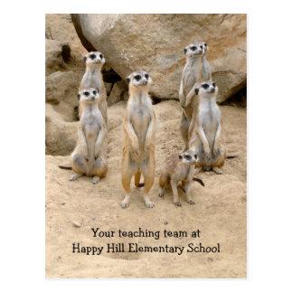 Zurück zu Schule Teamunterricht Meerkats Postkarte