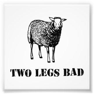 Zwei Bein-Schlecht-Schafe Photodrucke