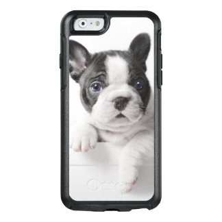 Zwei französische Bulldoggen-Welpen-Gleicher über OtterBox iPhone 6/6s Hülle