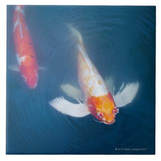 Japanisches koi zierfliesen for Fische im teich