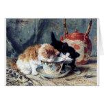 Zwei Kätzchen, die Tee-Party haben Karten