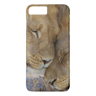 Zwei Löwen, die sich reiben iPhone 8 Plus/7 Plus Hülle
