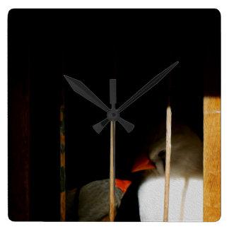 Zwei niedliche Fink-Vögel im Käfig Quadratische Wanduhr