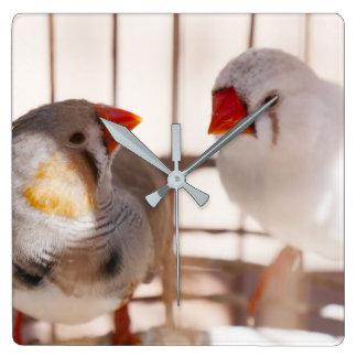 Zwei niedliche Finke im Käfig Quadratische Wanduhr