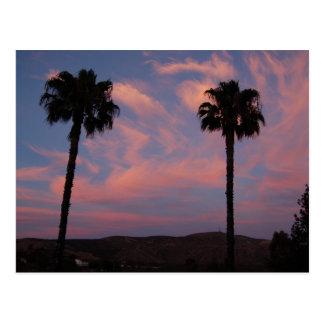 Zwei Palmen am Sonnenuntergang Postkarte