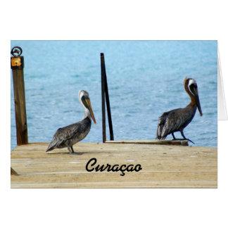 Zwei Pelikane auf dem Pier, Curaçao, Karte