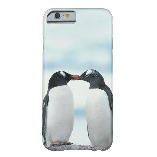 Zwei Pinguine, die Schnäbel berühren Barely There iPhone 6 Hülle