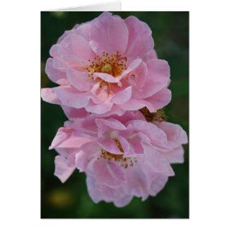 Zwei rosa Rosen Karte