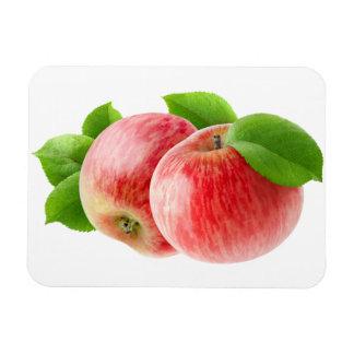 Zwei rote Äpfel Magnet