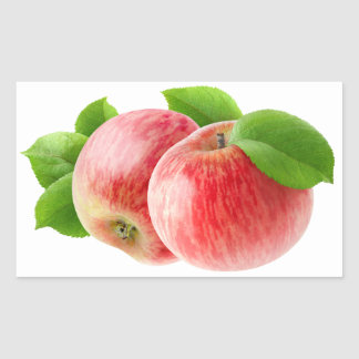 Zwei rote Äpfel Rechteckiger Aufkleber