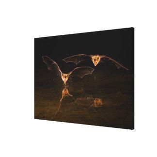 Zwei Schläger, die über Wasser, Arizona fliegen Leinwanddruck
