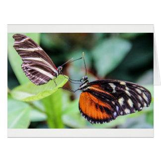 Zwei Schmetterlings-Gruß-Karte irgendein Ausdruck Karte