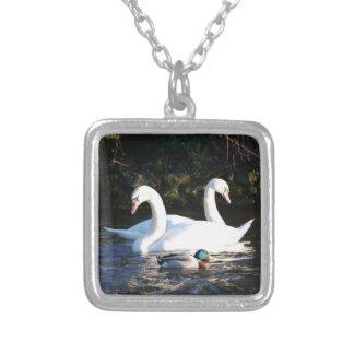 Zwei Schwäne und eine Ente Halskette Mit Quadratischem Anhänger