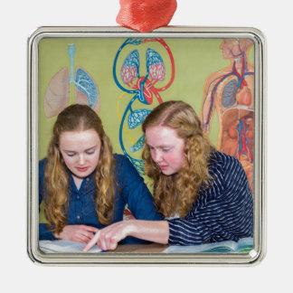 Zwei Studenten, die mit Büchern in der Silbernes Ornament