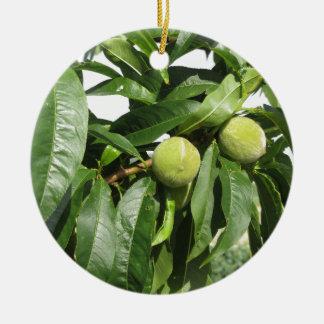 Zwei unausgereifte grüne Pfirsiche, die an einem Keramik Ornament