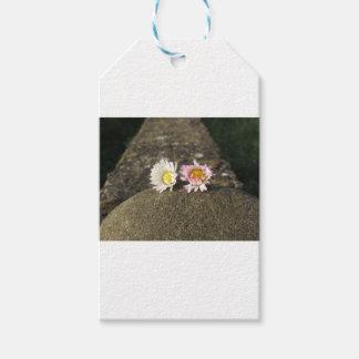 Zwei weiße Gänseblümchen, die auf dem Stein am Geschenkanhänger