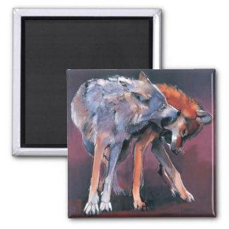 Zwei Wölfe 2001 Quadratischer Magnet