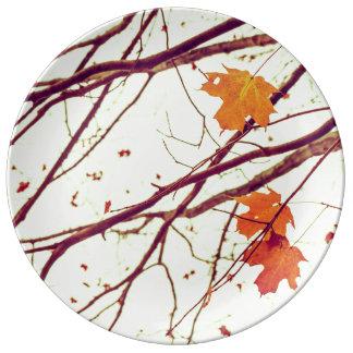 Zweige im Herbst Porzellanteller