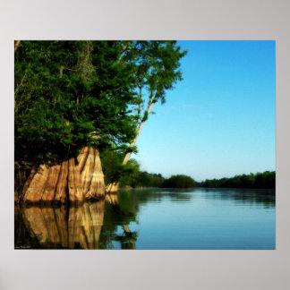 Zypresse-Fluss-Morgen-Plakat Poster