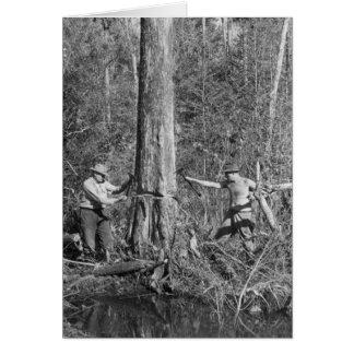 Zypresse-Holzfäller im Florida Everglades, 1952 Karte